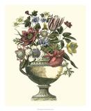 Floral Splendor II