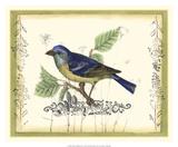 Bird & Wildflowers I