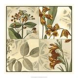 Botanical Quadrant IV