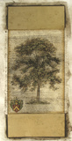 Rustic Tree I