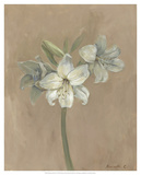 Blooms & Stems IV