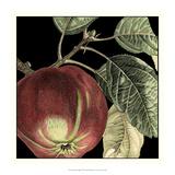 Dramatic Apple