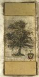 Rustic Tree II