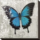 Blue Butterfly II