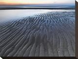 Shore Ripples