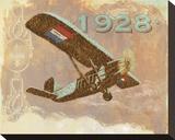 Vintage Plane I