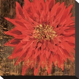 Floral Frenzy Red V
