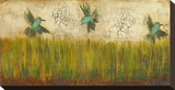 Hummingbirds in Tall Grass II
