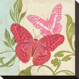 Fuschia Butterfly II