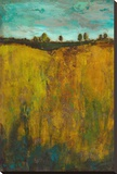 Turquoise Sky meets Golden Field I