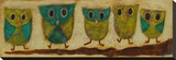 Turquoise Owl Family I