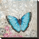 Light Blue Butterfly