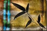 Bamboo Shade I