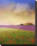 Lavender IV