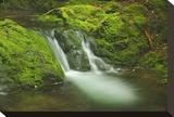 Dickson Falls II