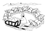 Eskimo on dog sled; the dogs are running around in a circle and are coming… - New Yorker Cartoon