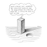"""Square peg looking at round hole thinking """"With a proper diet  moderate bu… - New Yorker Cartoon"""
