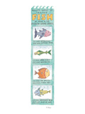 Revised Names of Various Fish by Order of the American Seafood Council - New Yorker Cartoon