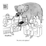 """No  this is the elephant"" - New Yorker Cartoon"