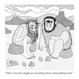 """""""There—now I've taught you everything I know about splitting rocks"""" - New Yorker Cartoon"""