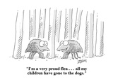 """I'm a very proud flea    all my children have gone to the dogs""  - Cartoon"