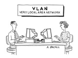 Sign above computer workstations reads: 'VLAN Very Local Area Network' - Cartoon