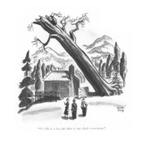 """We like it a lot  but there is one slight reservation"" - New Yorker Cartoon"