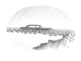Herd of lemmings are running off cliff  one is being chauffeured in a limo… - New Yorker Cartoon