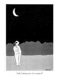 """Look  a shooting star—let's critique it!"" - New Yorker Cartoon"