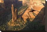 Spider Rock  AZ