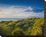 Ross Behy Sand Dunes  Ireland II