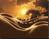 Camel Back Dream