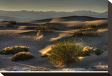 Stovetop Dunes  Death Valley