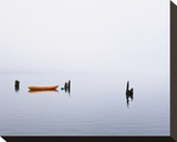 Lake Quinault Fog