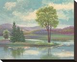 River Scape I
