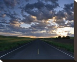 La Palouse Steptoe Road at Dawn