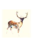 Le cerf aux chaussettes blanches Reproduction d'art par Charmaine Olivia