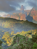 Rainforest and Granite Mountains  Serra Dos Orgaos National Park  Brazil