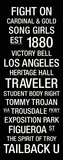 USC: College Town Wall Art