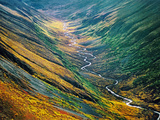 Fall Colors (Aerial)  Bremmer Valley  Wrangell-St Elias National Park  Alaska