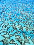Coral Reefs (Aerial)  Great Barrier Reef  Australia