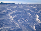 Icescape  Patriot Hills  Antarctica