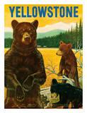 Yellowstone Go Greyhound c1960s