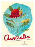 1935 Australia Shipping