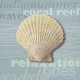 Beach Collection III