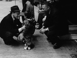 Frank Sinatra - 1961