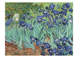Irises  1889