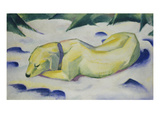 Dog Lying in the Snow  1910/1911