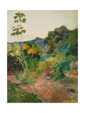 Martinique Landscape (Tropical Vegetation)  1887