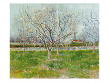 Blossoming Orchard  1888